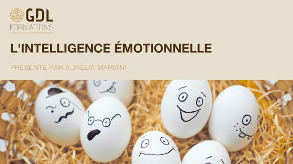 guide sur l'intelligence émotionnelle